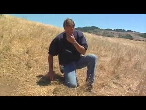 The Soil Solution - Focus On: Marin Carbon Project