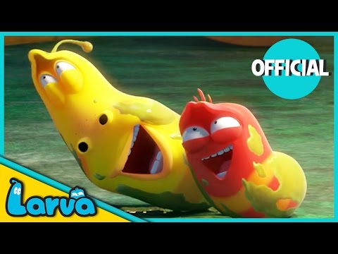 LARVA - BEST OF LARVA | Funny Cartoons for Kids | Cartoons F