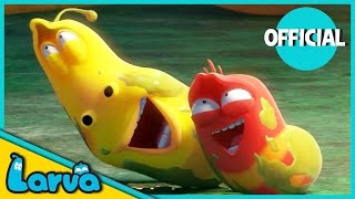 LARVA - BEST OF LARVA | Funny Cartoons for Kids | Cartoons For Children | LARVA Official WEEK 3 2017