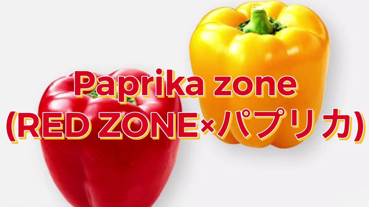 【自作アレンジ】Paprika  zone