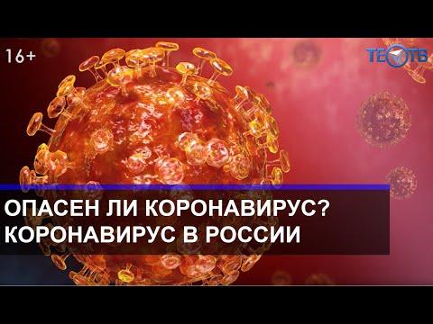 Придёт ли коронавирус в Россию / ТЕО ТВ 16+