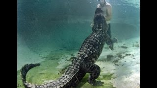 The Best of Rainbow Springs State Park ! Swimming With Alligators
