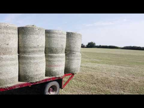 Making Hay While the Sun Shines...Literally
