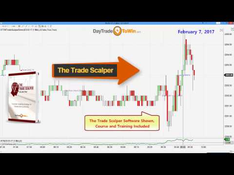 Day Trading Professional Shares Tips and Trading Secrets for Success
