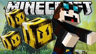the diamond minecart   minecraft   getting stung by a bee   custom command   tdm