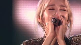 Hd Snsd Indestructible Live Phantasia