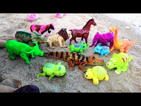 Review Annimals, Dinosaur, Elephant, Lion, Turtle, Fox, Buffalo, Cow, Horse, at sea รีวิว ไดโนเสาร์