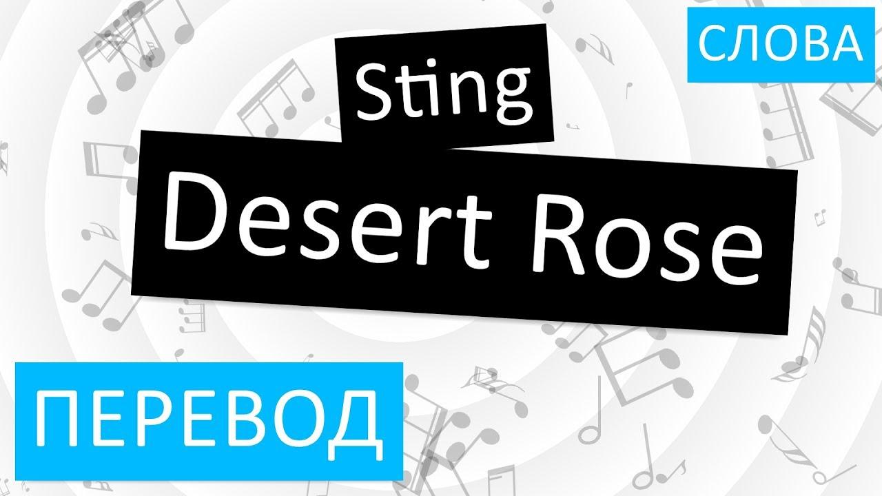 Стинг роза пустыни перевод песни на русский