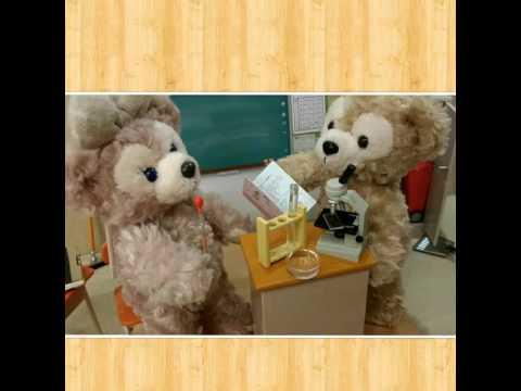 Duffy School