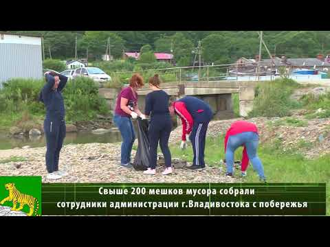 Свыше 200 мешков мусора собрали сотрудники администрации г.Владивостока на побережье