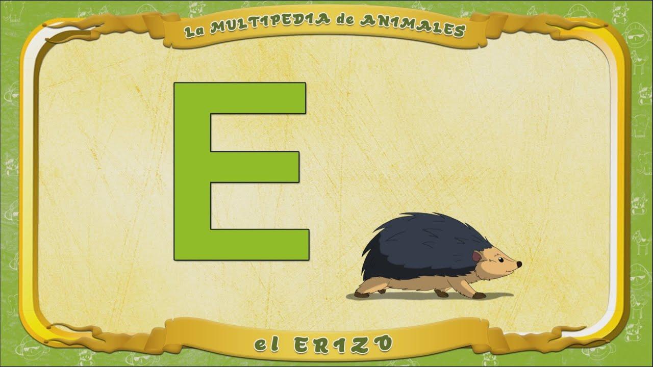 Multipedia De Los Animales Letra E El Erizo