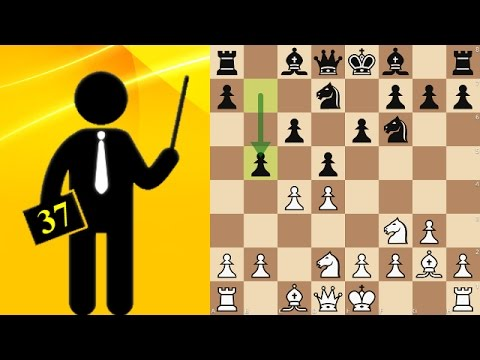 Standard chess game #37 - Slav Defense, Modern
