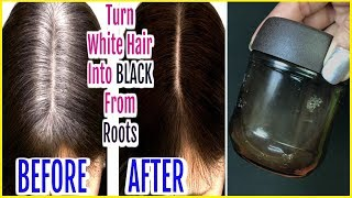 Magical Oil to Change White Hair to Black Naturally |Turn White Hair to Black Permanently in 7 Days