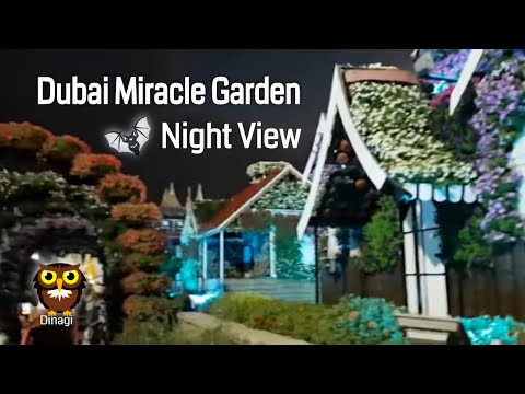 Dubai Miracle Garden | Full HD | 1080p