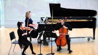 Smetana Piano Trio Op. 15 - Mvt. III: Finale. Presto