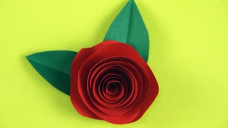 einfache Rosen basteln mit Papier