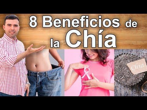 Para Que Sirve La Chía - 8 Beneficios y Propiedades Para Adelgazar, Belleza y Salud
