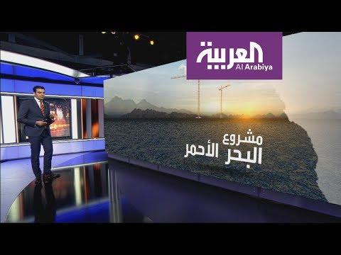 بين الوجه وأملج.. السعودية تحلم بإحياء براكين وتاريخ البحر ا  - نشر قبل 10 ساعة