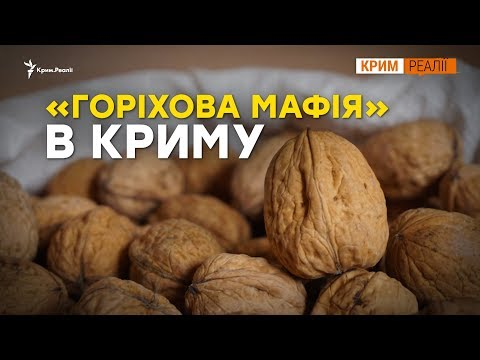 Чому в Криму шалений попит на  горіхи?   Крим.Реалії