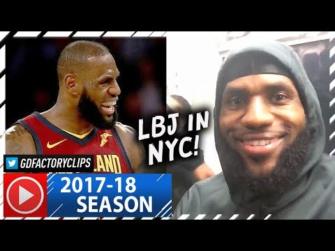 LeBron James CRAZY Full Highlights vs Knicks 2017.11.13  23 Pts, 12 Ast, 9 Reb, DAGGER!