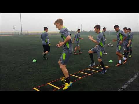 Soccer Coaching  Motor Coordination