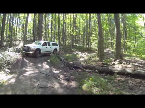 Manistee National Forest Part 1