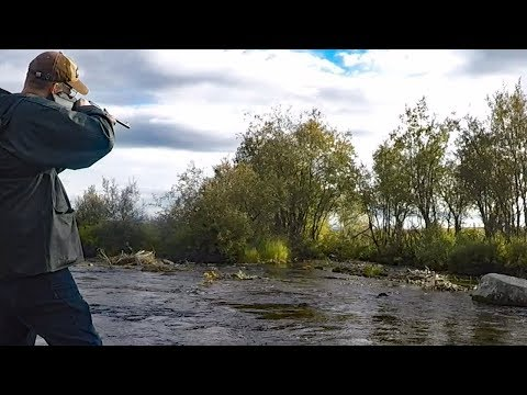 Alaska Adventure - Part 2  Hunting In Alaska And Fishing For Grayling