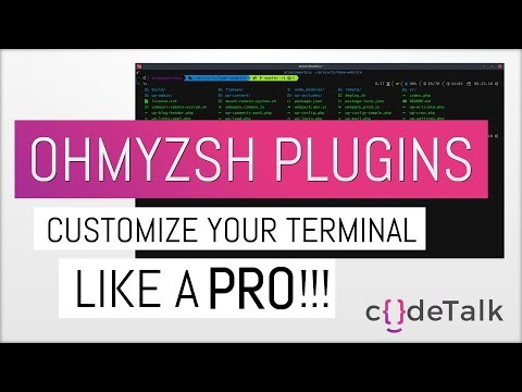 Customize your terminal like a PRO!!! Powerlevel9k theme and