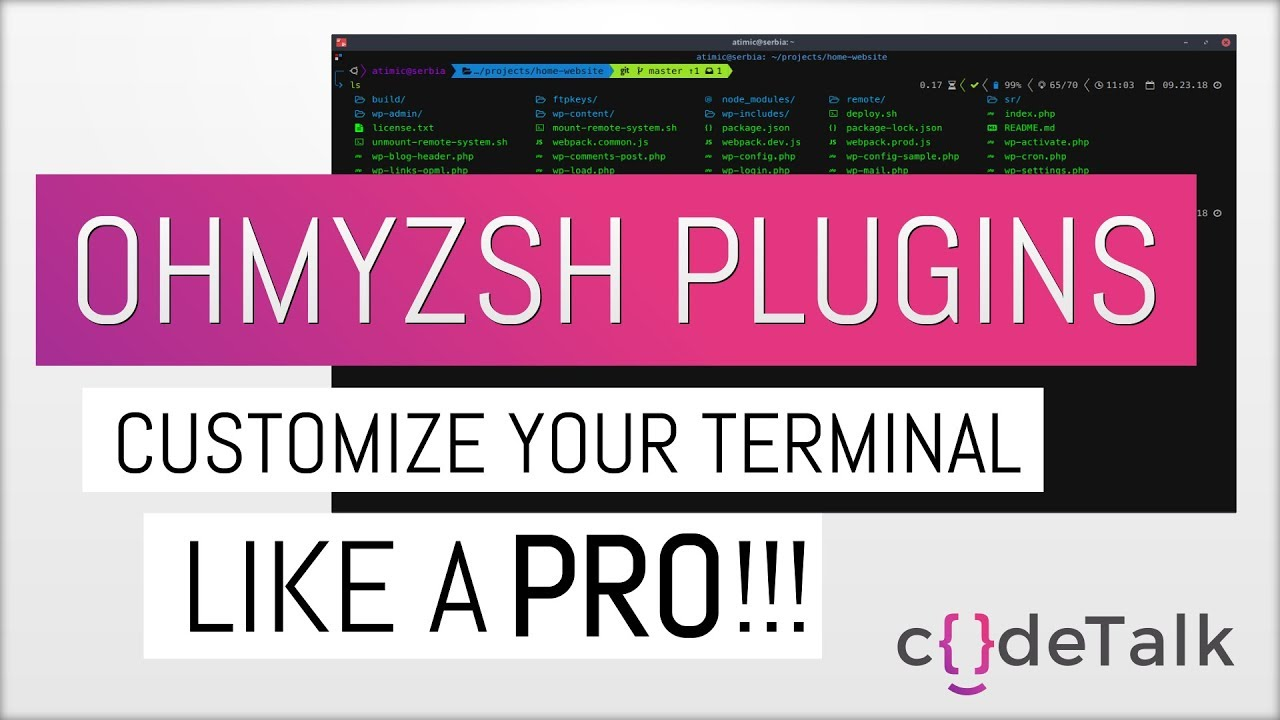 Customize your terminal like a PRO!!! Powerlevel9k theme and Oh-my-zsh  plugins (2018) [PART 2]