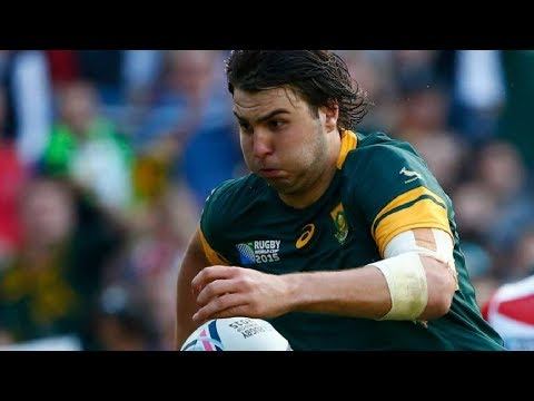Reviewing Springboks V Wallabies - Rugby Championship