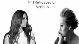 Phil RetroSpector || Born To Die / Set Fire To The Rain Mashup