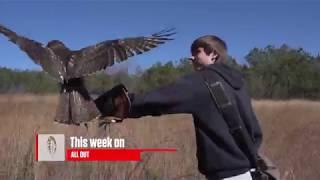 Harnett County Falcon Hunt | Carolina ALL OUT S-2 Ep/3
