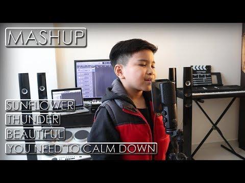 sunflower-x-thunder-x-you-need-to-calm-down-x-beautiful-||-alfredo-(mashup-remix)-cover