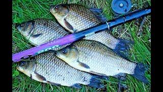 Красивая рыбалка в камышах на карася. КЛЮЮТ КАРАСИ МОНСТРЫ! Рыбалка с тонущей лодки