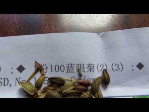 Вопрос: Семена из Китая стоит ли заказывать?