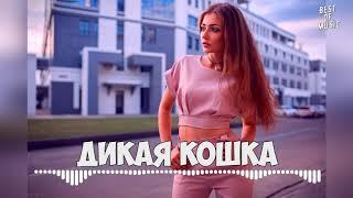 LIRANOV - Дикая кошка, 2019 Премьера