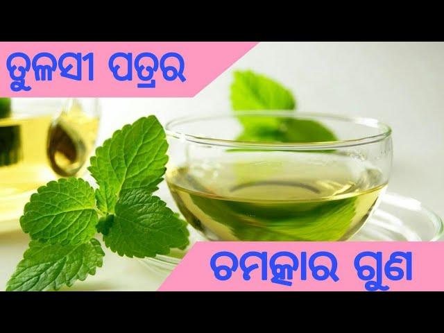 Odia || Usefulness of Tulsi Leaf | Tulasi Patra ra Upakarita | Barnali