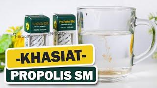 Obat Benjolan - Uci-uci - Herbal Propolis Brazil SM With Nano Technology Asli Original Ampuh Tanpa Efek Samping
