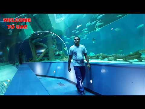 Visit to  Inside Sharjah Aquarium  full video UHD 2017