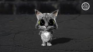Скачать Happy Birthday Cute Kitty Cat