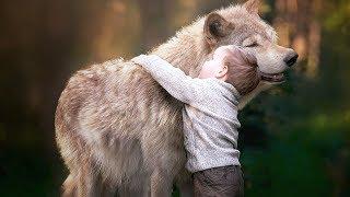 12 Jahre im Wolfsrudel - als alter Mann kehrt er zurück und ist schockiert!