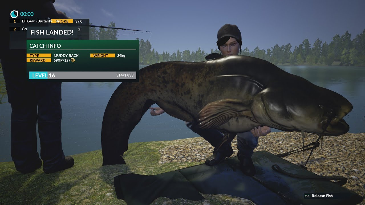 dovetail games fishing monster catfish 42kg youtube
