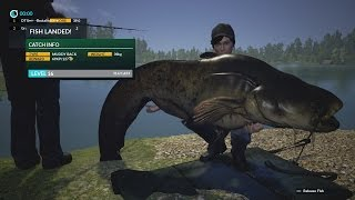 Dovetail Games Fishing Monster Catfish 42kg.
