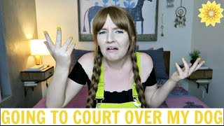 GOING TO COURT OVER MY DOG | STORYTIME | MEGHAN HUGHES