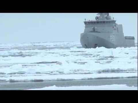 Danish war ship against Polar bear  Crew and Activists of Greenpeace