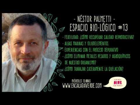 Néstor Palmetti / Espacio Bio-Lógico #13