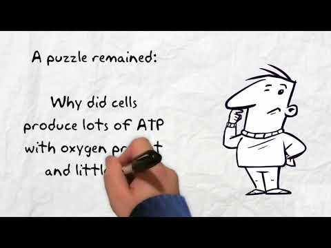 An Introduction to Enzyme Assays