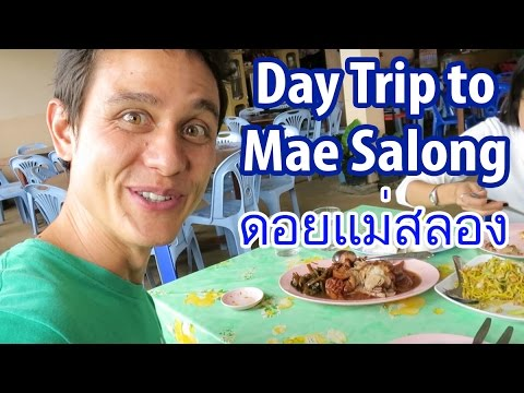 Day Trip to Mae Salong (ดอยแม่สลอง), a Beautiful Yunnanese Village in Chiang Rai, Thailand