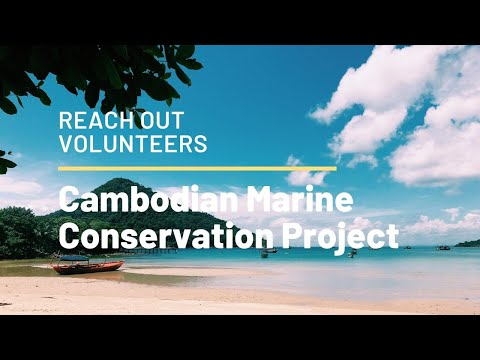 Reach Out Volunteers - Cambodia Marine Conservation Program 2018