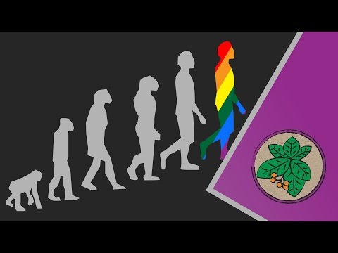 Why does Homosexuality Evolve?